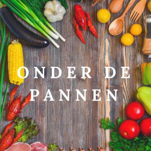 Onder de pannen @ De Westbroek | Velserbroek | Noord-Holland | Nederland